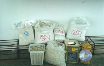 Part II  MUSHROOM CULTIVATION BY PEOPLE WITH DISABILITIES