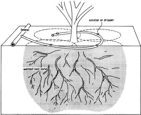 Chapter 6 Drip Irrigation