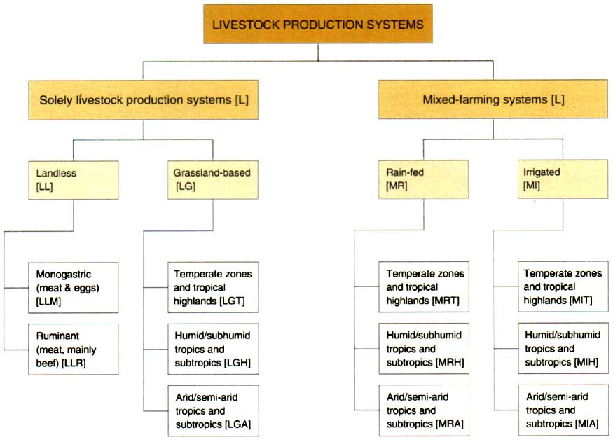 a classification of livestock production systems. Black Bedroom Furniture Sets. Home Design Ideas