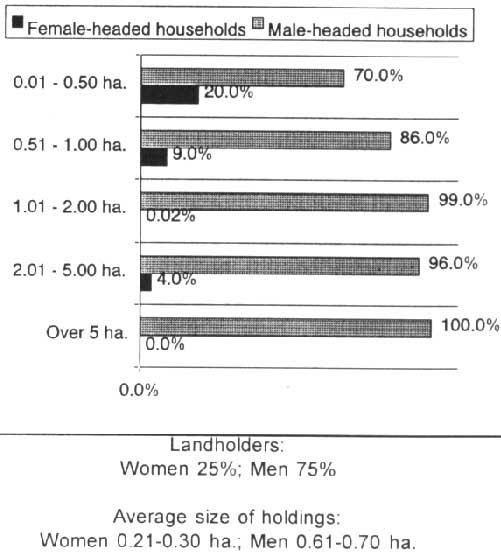 Fact sheet: Tanzania - Women, agriculture and rural development