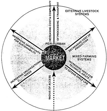 Market Orientation Of Small Scale Milk Producers Background And
