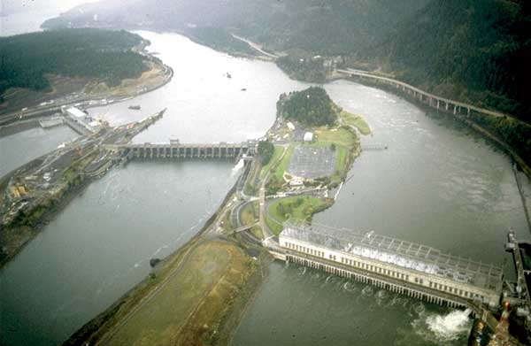 DAMS, FISH AND FISHERIES- Opportunities, challenges and