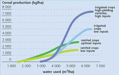 irrigation has the potential to provide higher yields than rainfed  agriculture but water requirements are also much higher