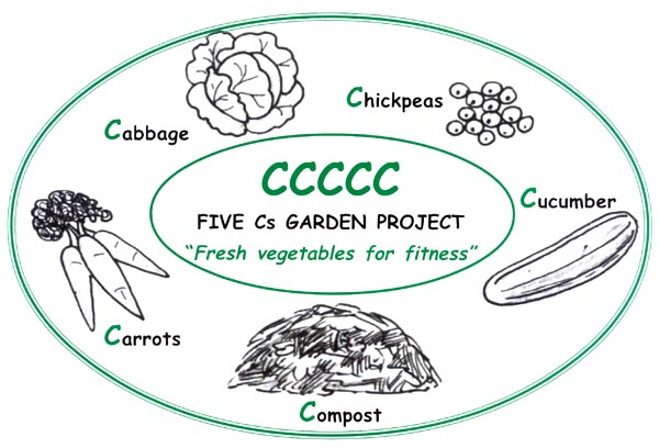 Setting Up And Running A School Garden, Backyard Vegetable Gardening Project Proposal