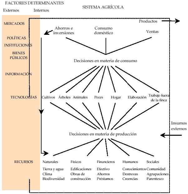 4 2 Factores Determinantes De Los Sistemas Agrícolas