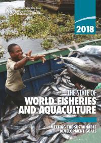 Humans consume 151.2m tonnes of fish – NaijAgroNet: