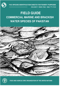 R7066e200g fao species identification sheets for fishery purposes field guide to the commercial marine and brackish water species of pakistan sciox Gallery