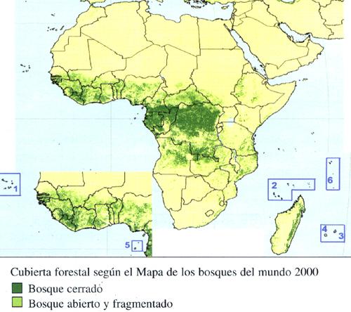 Capitulo 18 Islas Pequenas De Africa