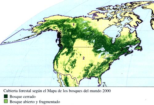 Cap tulo 34 am rica del norte excepto a m xico for Plano de un vivero forestal