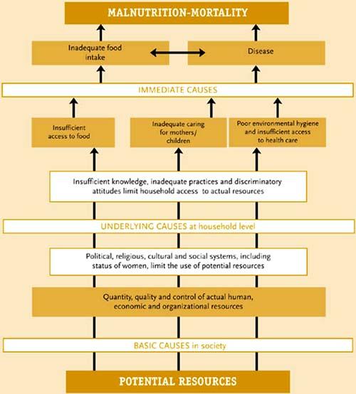 Nutrition Indicators for Development