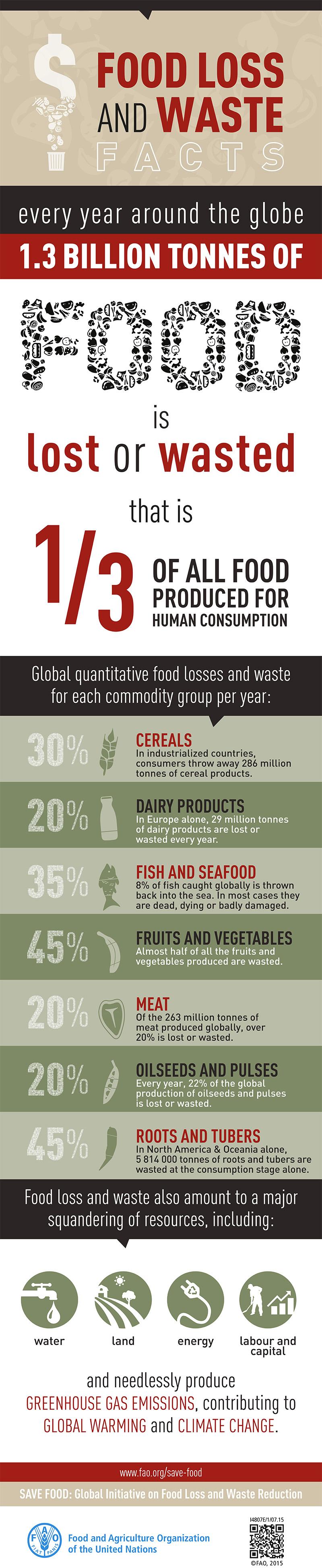 FAO Infographic FoodWaste en - Niemand is perfect, ook groenten niet! Check kromkommer...