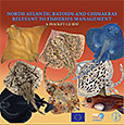 North Atlantic batoids and chimaeras relevant to fisheries management