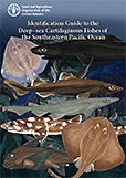 Identification guide to the deep–sea cartilaginous fishes of the Southeastern Pacific Ocean