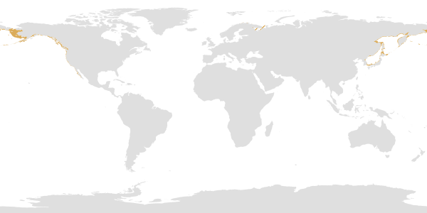 http://www.fao.org/figis/geoserver/wms?service=WMS&version=1.1.0&request=GetMap&layers=fifao:UN_CONTINENT2,species:SPECIES_DIST_CHU&bbox=-180.0,-90.0,180.0,90.0&width=600&height=300&srs=EPSG:4326&format=image%2Fpng