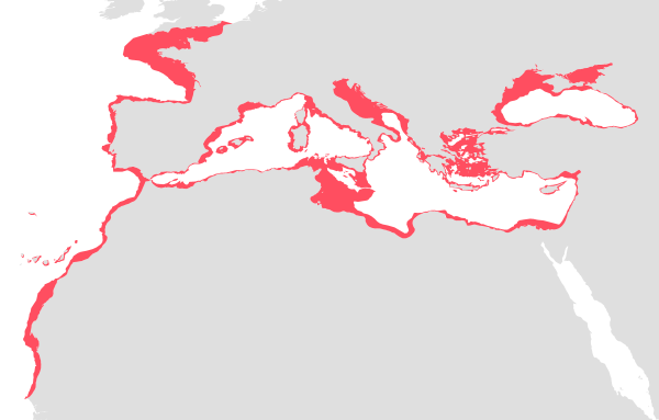 Geonetwork the portal to spatial data and information map overview altavistaventures Images