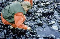 Measuring the damange of an oil spill, which can penetrate well beyond the surface