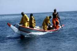 Artisanal fishers in a typical canoe in Senegal
