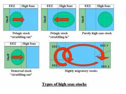 Types of high seas stocks