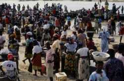 Fish markets generate additional employment for the sector