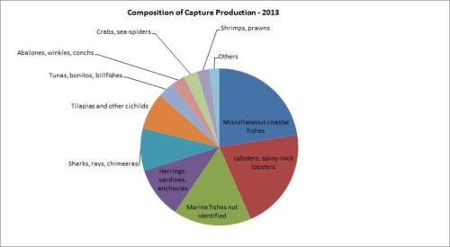 Figura 5 – Composición de la producción de la pesca de captura - 2013/Composition of capture production - 2013