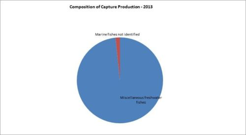 Figure 5 - Bosnia and Herzegovina - Composition of capture production - 2013