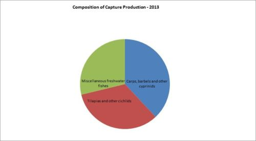 Figure 5 — Ethiopia — Composition of capture production – 2013