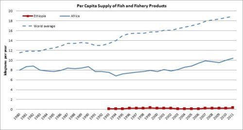Figure 11 — Ethiopia — Per capita supply of fish and fishery products