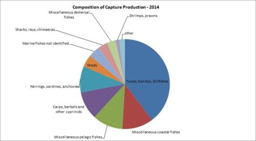Figure 5 — Iran — Composition of capture production – 2014