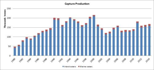 Figure 3 — Kenya — Capture production
