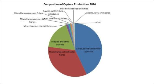 Figure 5 — Kenya— Composition of capture production – 2014