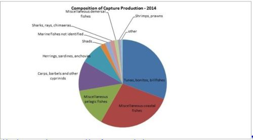 Figure 5 — Ghana — Composition of capture production - 2014