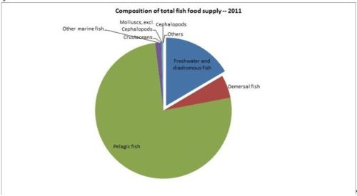 Figure 12 — Ghana — Composition of total fish food supply - 2011