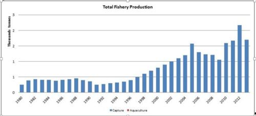 Figure 1 — Djibouti— Total fishery production