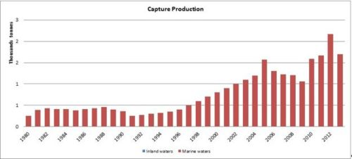 Figure 3 — Djibouti — Capture production
