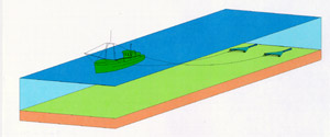 Shrimp beam trawling using big sized vessels