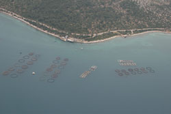 Floating cages aquaculture, Turkey