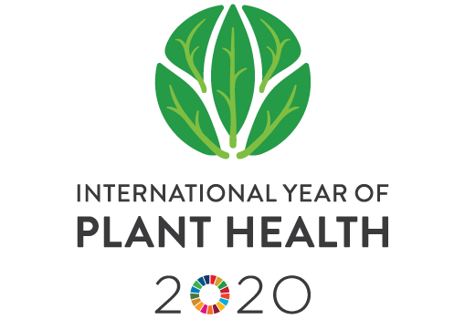 International Year of Plant Health