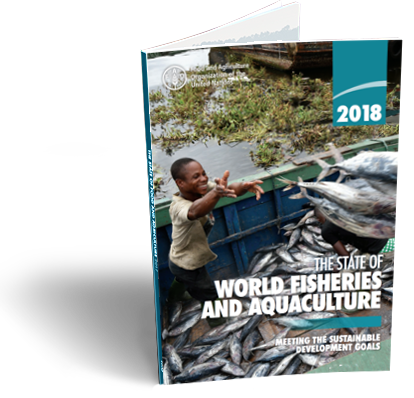 State of Fisheries and Aquaculture in the world 2018
