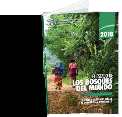 El estado de los bosques del mundo 2018