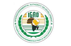 The Intergovernmental Authority on Development (IGAD)