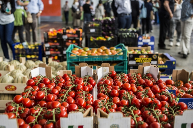 Transforming food and agricultural systems: a challenge we must face together
