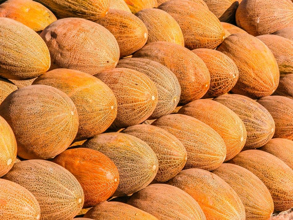 Codex Alimentarius: protecting health, facilitating trade