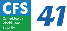 CFS41
