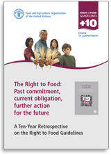 Right to Food Synthesis report
