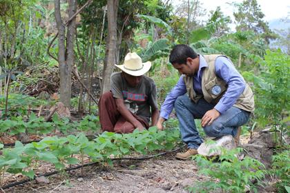 Apoyo a los trabajos de resiliencia para la zona del Corredor Seco en Chiquimula, Guatemala
