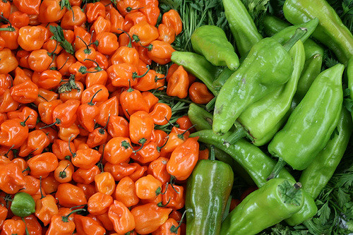 Mexican Peppers