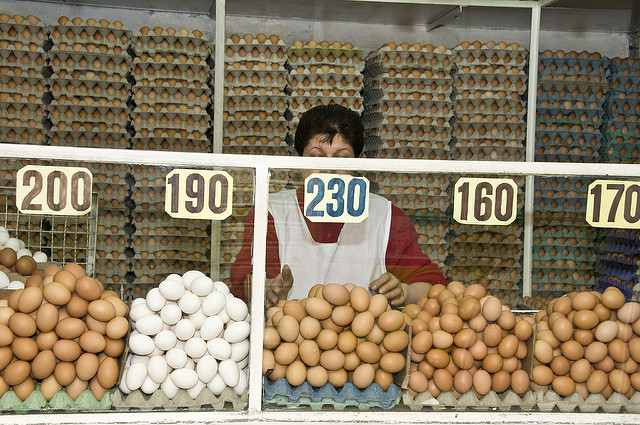 Lady selling eggs in Colombia
