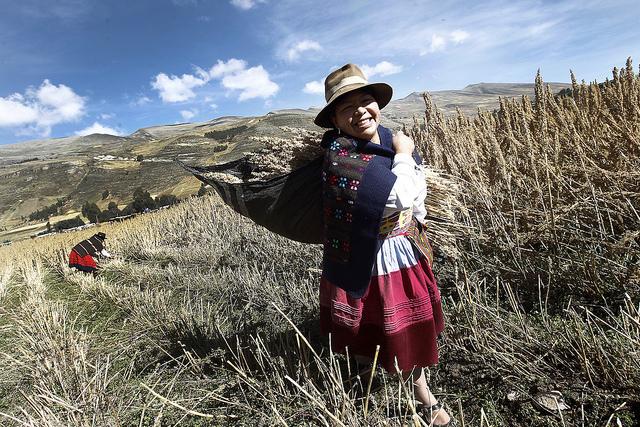 Ceremonia agrícola realizada en distrito de Ñahuimpuquio, Perú
