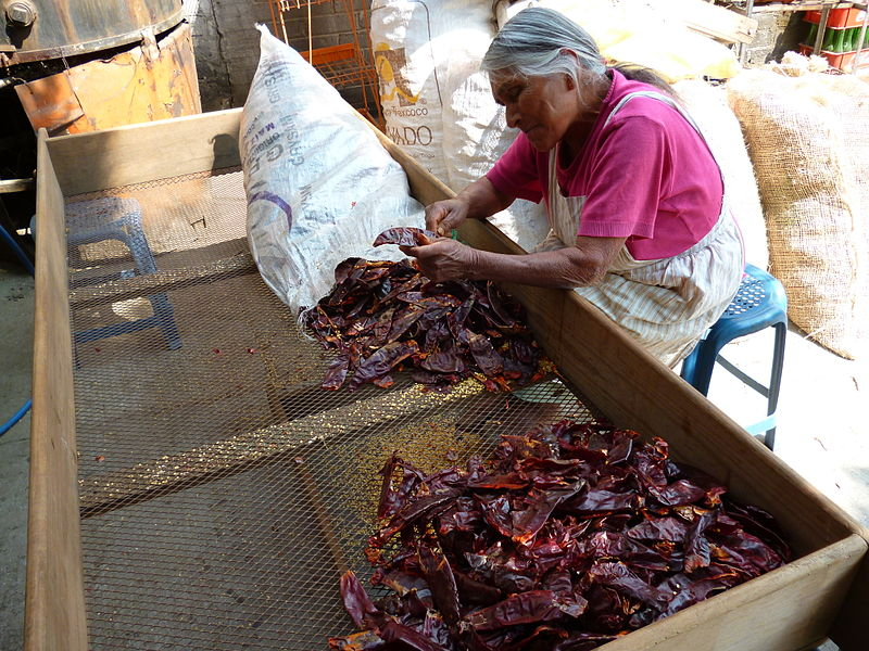Woman removing seeds from dry chili peppers in San Pedro Atocpan, Mexico City