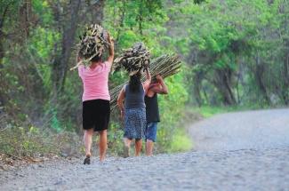 Mujeres cargando leña en la zona de la Amazonia peruana